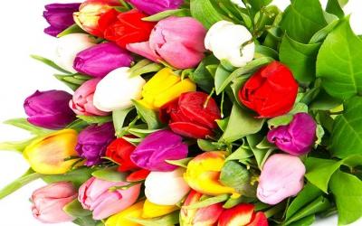 Як дарувати квіти на роботі?