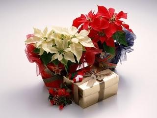 Можно дарить подарки заранее?
